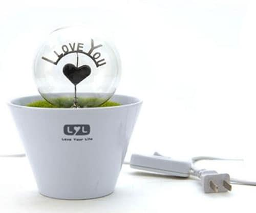 Romantic Flower Pot Lamp Night Light - I Love You